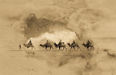 Camels used on the Silk Road